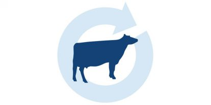 Dairy icon.