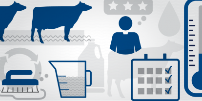 Graphic showing keys to cattle footbath effectiveness