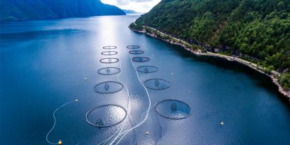 Aerial view of an aquaculture production operation.