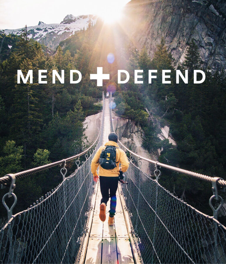 OurHistory-MendDefend-440x513