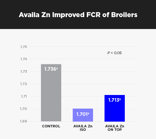Poultry-AvailaZn-FCR-Broilers-540x480